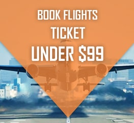 Under $99 Flights Ticket