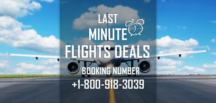 Last Minute Flights Deals Last Minute Airlines Reservations