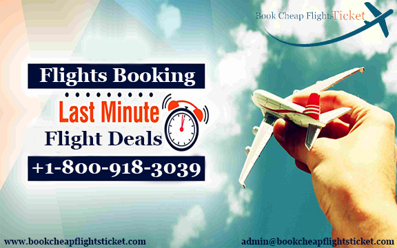 last minute flight deals